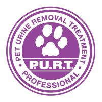 4-chemdry-adelaide-purt-pet-urine-removal-treatment